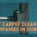 The 6 Best Carpet Cleaning Companies in Dublin