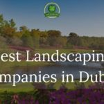 The 5 Best Landscaping Companies in Dublin